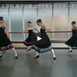 IBHS 2017